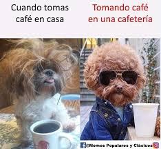 meme café en casa y en la cafetería